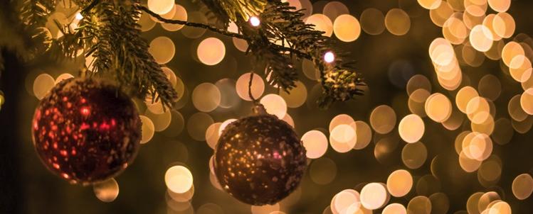 Newsletter December: GDPR, attendance and new app